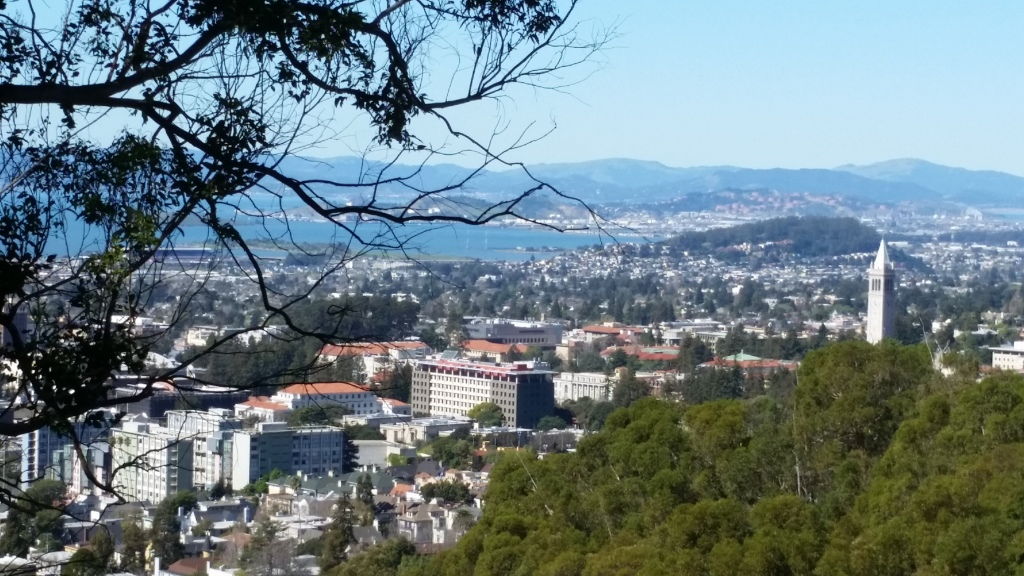 The University of California Berkeley campus