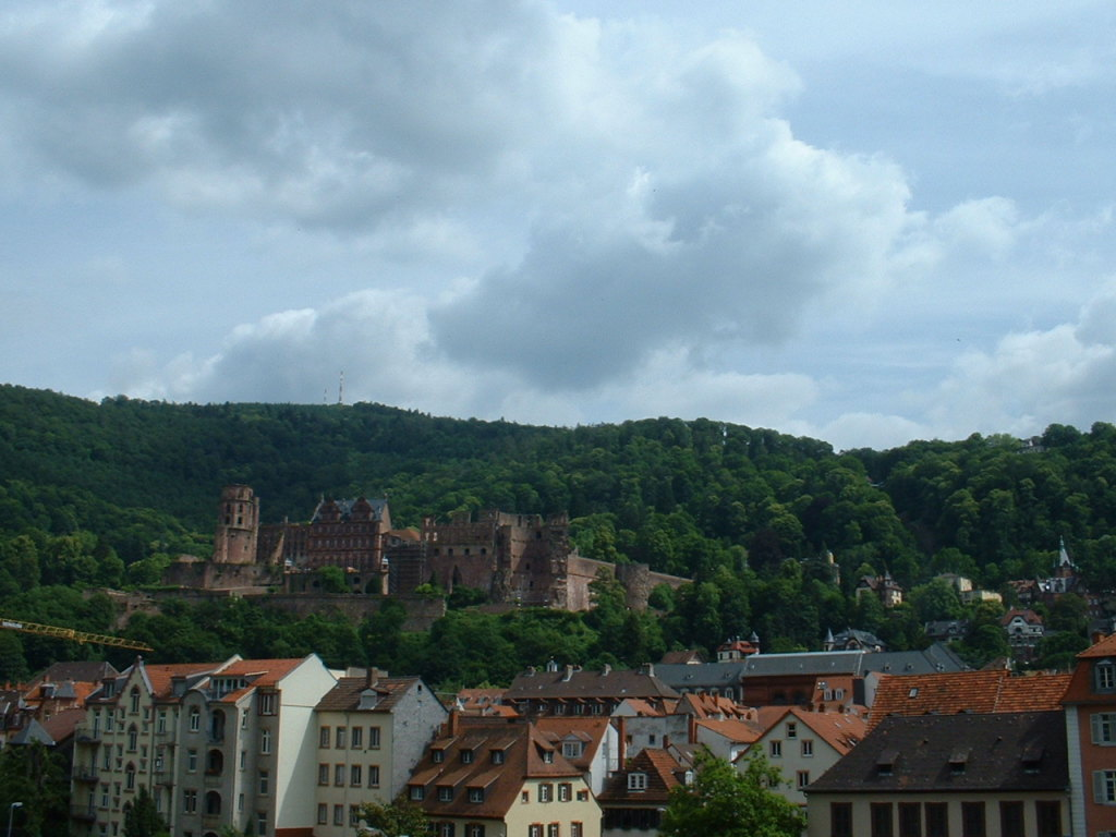 Heidelberg town and castle