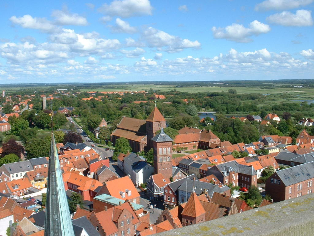 Ribe View from Church Tower