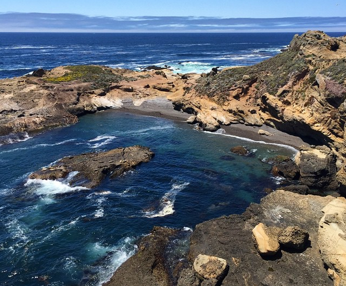 Sea-Lion-Trail-Point-Lobos-Monterey-Bay