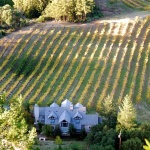 Godspeed-Vineyards-Aerial-Image